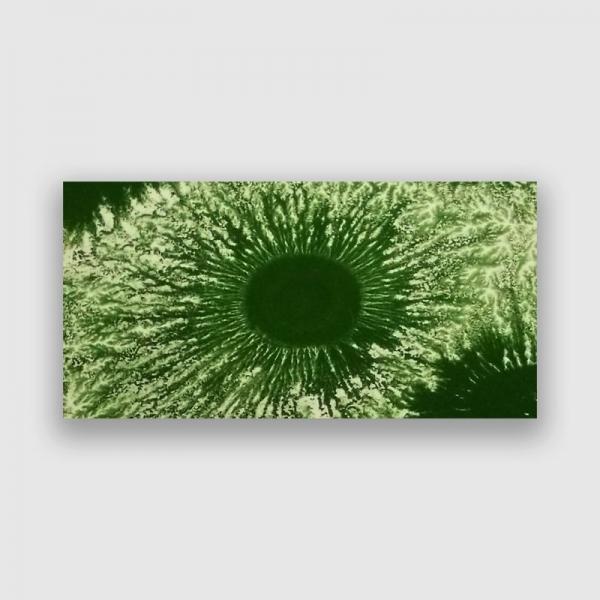 MCH 303 Зеленый мокко краска Seramiksir